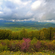&quot;View to a Spring Storm&quot;<br /> <br /> Lovely spring flowers, and tender green leaves on trees in the foreground contrast with the stormy mountain view behind!!<br /> <br /> The Blue Ridge Mountains by Rachel Cohen