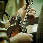Subdued Stringband Jamboree