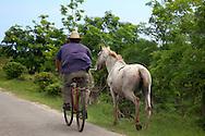 Man on bicycle leading a horse near Floro Perez, Holguin, Cuba.