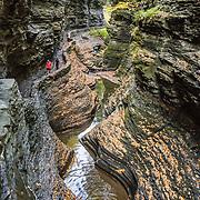 NY: Watkins Glen State Park