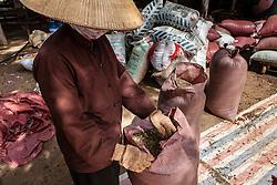 A vietnamese woman packs coffee beans in bags, Da Lat area, Vietnam, Southeast Asia