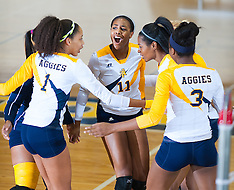 2014 A&T Volleyball vs Bethune Cookman University