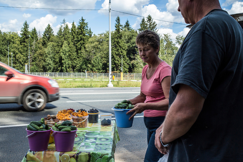 Several varieties of mushrooms, along with cucumbers, berries, and other garden produce, are sold on the roadside on Sunday, August 18, 2013 near Potapovo, Russia.
