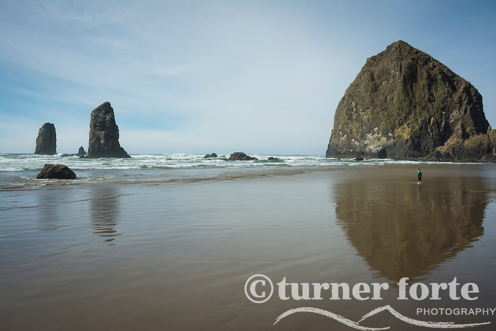 Toddler boy watches the powerful ocean waves in the reflection of Haystack Rock, Cannon Beach, Oregon.