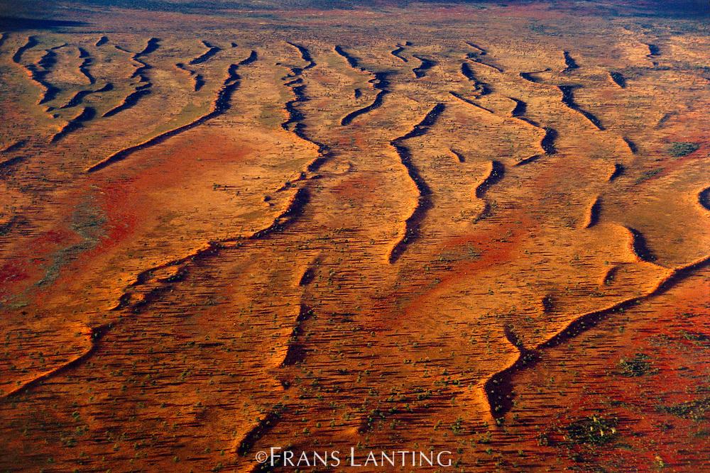 Sand dunes (aerial), Central Australia
