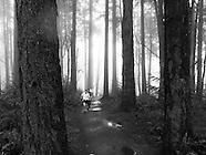 Wildwood Trail Run