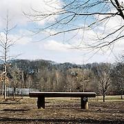 Prospect Park, Brooklyn, New York. 2011
