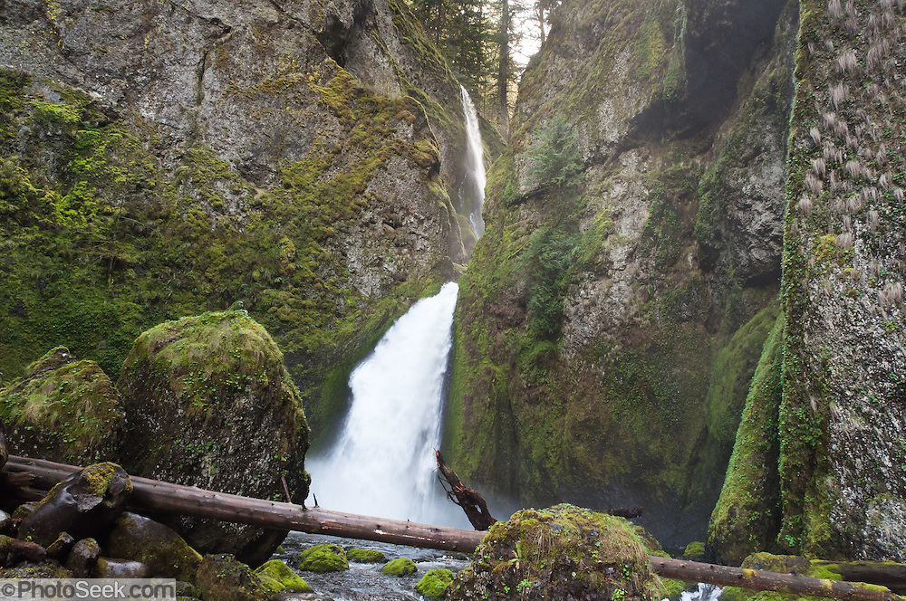 Wahclella Falls plunges 350 feet in two tiers (with 60-foot second tier) on Tanner Creek, in Columbia River Gorge National Scenic Area, Oregon, USA.