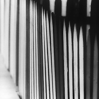 soft focus image of a picket fence, diminishing into the distance