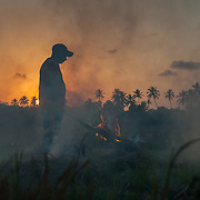 Farmers in the Goa burn the plant material remaining on their fields after harvest to prepare for planting the next crop. Burning is considered by some people to be an essential tool because it removes crop residue, makes seeding easier, helps maintain crop yields, and reduces the use of chemicals by combating plant diseases, harmful insects, and weeds.  Burning can also reduce the need for tilling, which makes soil less susceptible to erosion and reduces water quality and windblown dust problems. Despite the benefits, field burning can cause serious environmental and health effects. Burning creates a concentrated plume of smoke that can travel many miles.  Although burning is usually conducted for short periods of time, the lingering cloud can affect air quality in.communities both in the immediate area of the burn and those miles away.