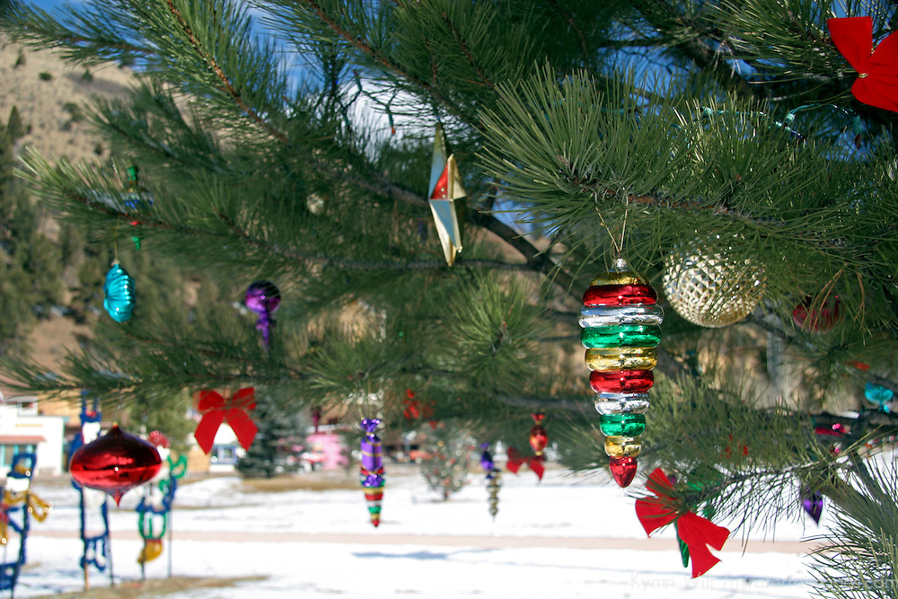 USA, New Mexico. Outdoor pine tree decorated with Christmas ornaments.