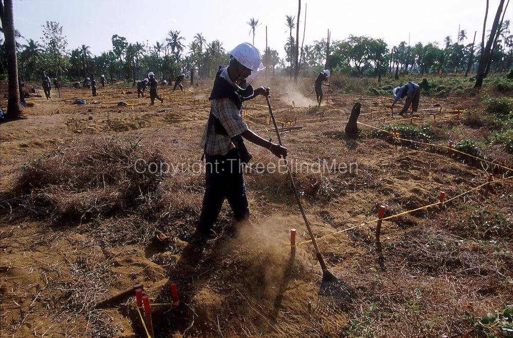 Sri Lanka Clearing Landmines Jaffna Threeblindmen