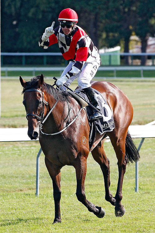 Mark Du Plessis holds up a finger as he rides Irish Fling back to scale after winning the 1200m Telegraph Handicap at Trentham Racecourse, Wellington, New Zealand, Saturday, January 18, 2014. Credit: SNPA/Dean Pemberton