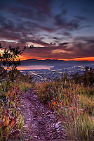 Hiking trail leading down the mountainside in the Wasatch Mountains of Utah that overlook Utah Valley.
