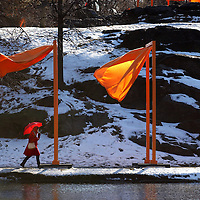 The recent artwork of the 7,500 hanging Orange Gates by Christo and Jeanne-Claude, decorate 23 miles throughout Central Park February 23, 2005 in New York City.  The Gate's have received mixed reviews.  Photo by Ken Cedeno.