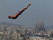 FINA World Championships -- Barcelona, Spain