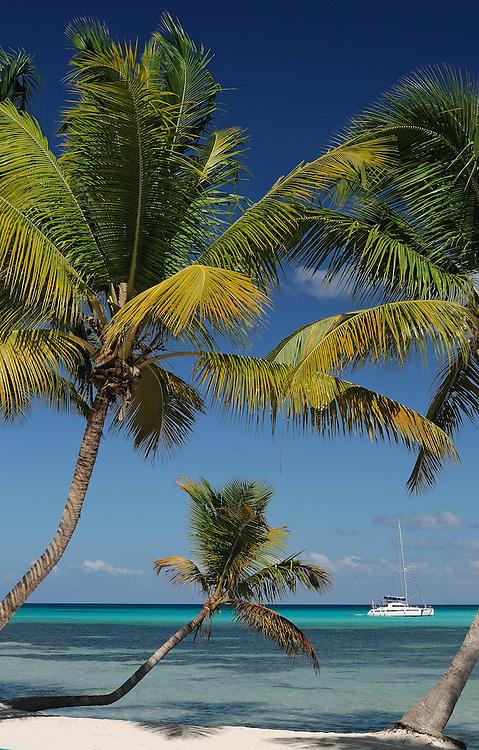 Vela Blanca, Private Beach at Isla Saona, Dominican Republic