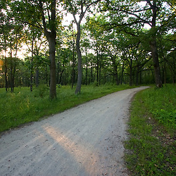 A last ray of sunlight hits a hiking and biking trail in the Waterfall Glen Forest Preserve in suburban Chicago, IL.