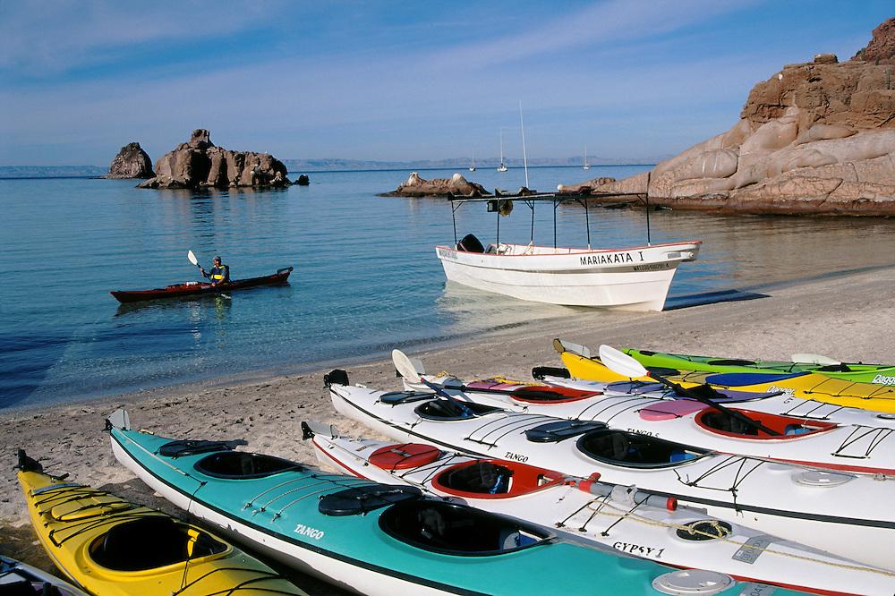 Kayaks on Candelera Beach, Espiritu Santo Island near La Paz, Baja California Sur, Mexico. OARS outfitters sea kayaking tour with Mar y Aventura.