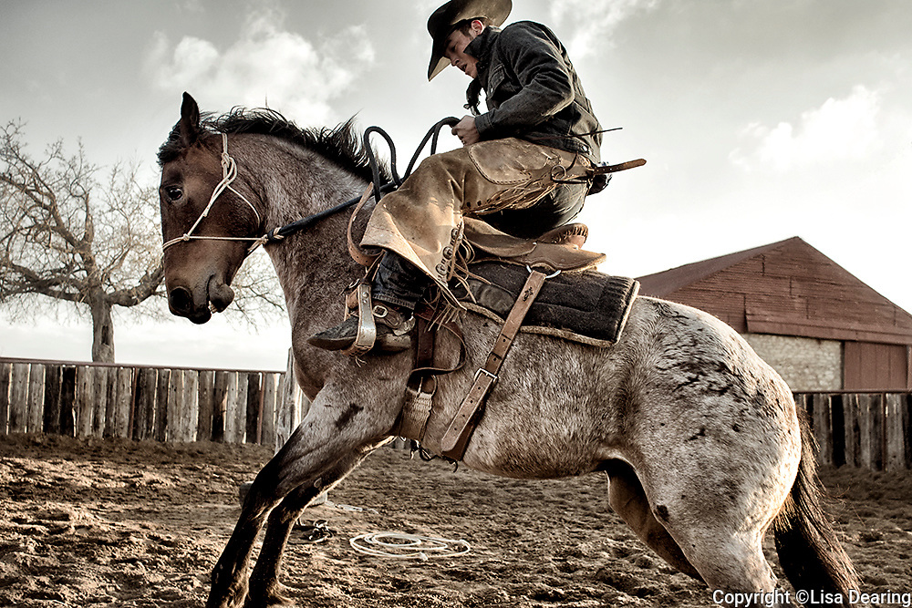 Cowboy Riding Bucking Colt on the First Ride