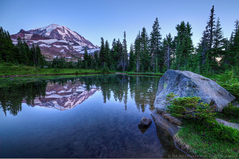 Mt. Rainier Natural Landscape