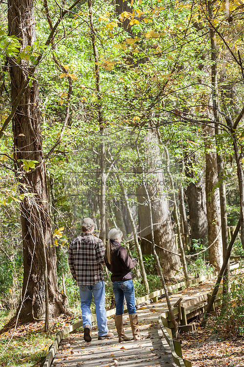 A couple walks the boardwalk loop through Congaree National Park, the largest intact expanse of old growth bottomland hardwood forest remaining in the southeastern United States in Columbia, South Carolina.