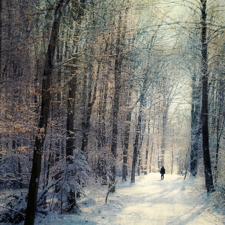 Lone walker in a sun drenched snow covered forest. Textured photo<br /> Prints &amp; more: http://society6.com/DirkWuestenhagenImagery/winter-walk-NZl_Print<br /> <br /> License this through Getty Images:<br /> http://www.gettyimages.com/detail/photo/winter-walk-royalty-free-image/159227730?esource=en-us_flickr_photo&amp;language=en-US