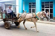 Horse and cart in Moron, Ciego de Avila, Cuba.