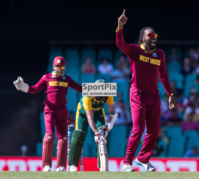 ICC Cricket World Cup 2015 Tournament Match, South Africa v West Indies, Sydney Cricket Ground; 27th February 2015<br /> West Indies Chris Gayle a successful appeal for LBW
