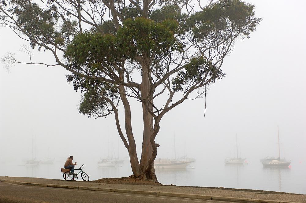 Fog at Bay, Morro Bay, California, United States of America