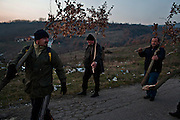Men from the Serbian village of Velika Hoca march in to the center of town all together with their Christmas trees after beginning their Christmas Eve celebrations in the fields on the outskirts of town...Orthodox Christmas (January 7) in the Serbian village of Velika Hoca, Kosovo.