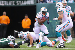Oct 28, 2012; East Rutherford, NJ, USA; Miami Dolphins running back Reggie Bush (22) runs with the ball during the first half of their game against the New York Jets at MetLIfe Stadium.
