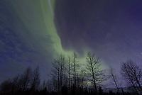 Aurora, April 20, 2017 near Denali, Alaska