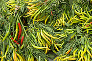 Chili Peppers, Old Monterey Farmers Market, California
