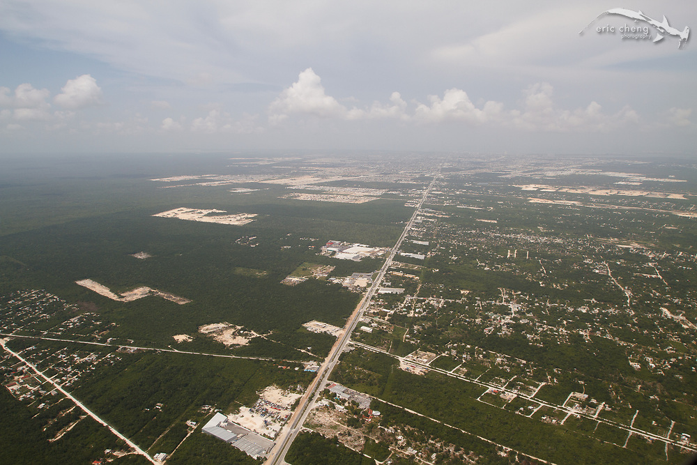Aerial view, Yucatan Peninsula, Mexico