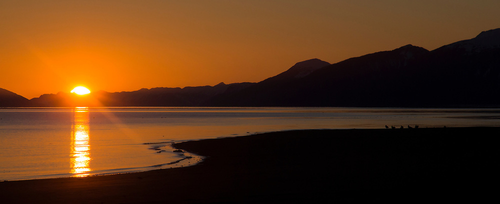 An orange sunset along a beach in Glacier Bay National Park with birds along the waters' edge.