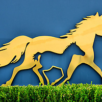 Kentucky Horse Park Logo in Lexington, Kentucky<br />