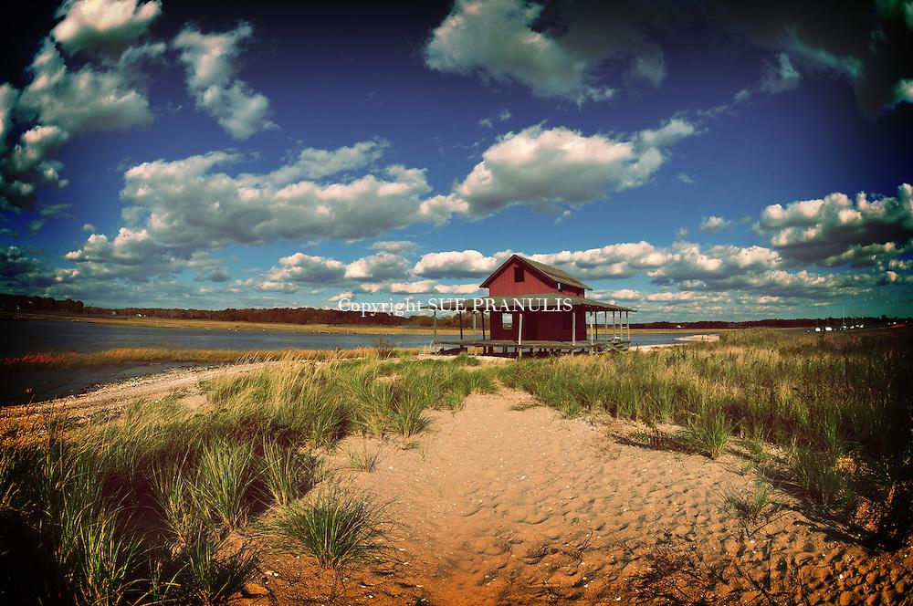 Beach Shack Island
