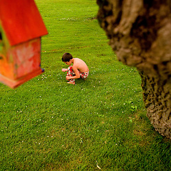 Tyler searches through the grass after a rain storm on Donnell Lake.