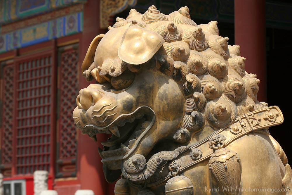 Asia, China, Beijing. Gold Fu Dog at Forbidden Palace