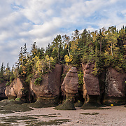 Visit Hopewell Rocks (Flowerpot Rocks) at Hopewell Cape, near Moncton, New Brunswick, Canada. Hopewell Rocks have one of most extreme tidal ranges in the world: up to 16 meters (52 feet) vertically. Waves and tides twice per day have eroded the base of the rocks faster than the tops, leaving arches and curiously shaped formations of dark sedimentary conglomerate and sandstone rock. For best photo lighting, go in morning (or spectacular sunrise) during the first low tide of the day, safe for 3 hours before low tide until 3 hours after. Walking the beach is easy until its southern end, where The Ledges, a ridge of slippery limestone, can be clambered over to reach Demoiselle Beach. Bay of Fundy has the highest tidal range in the world, due to a resonance of being just the right length (270 km) matching the gravitational pushing cycle of the Moon that causes the tides. Due to the bay's optimal size, the time it takes a large wave to go from the mouth of the bay to the inner shore and back is practically the same as the time from one high tide to the next. (See the effect of resonance by steadily pushing a long pan of water back and forth: an optimal pushing frequency for a given pan size will build up a high wave of water which sloshes out; but pushing too fast or too slow won't build up the big wave.) Two high tides occur per day, one when the ocean side of the Earth is nearest the Moon, and one on the side most distant from the Moon, about 12 hours and 25 minutes from one high tide to the next. The Bay of Fundy is on the Atlantic coast of North America, on the northeast end of the Gulf of Maine between the Canadian provinces of New Brunswick and Nova Scotia. Address: Hopewell Rocks Ocean Tidal Exploration Site (phone 506-734-3429), 131 Discovery Rd, Hopewell Cape, NB E4H 4Z5.