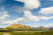 Lenticular clouds and evening light on the mountains surrounding the Toklat River Valley make for a dramatic scene in Denali National Park in Southcentral Alaska. Summer.