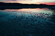Chiprana salty lagoon at sunset