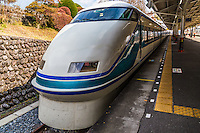 "Tobu Railways, ""Spacia"" trains have been designed for a smooth, and comfortable ride. Luxurious private compartments are also available for groups.  Tobu Spacia is the most popular method of transport to Nikko, one of Japan's most popular UNESCO World Heritqge Sites."