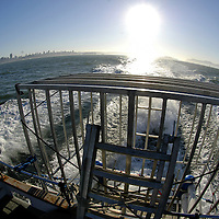 Great white shark diving cage with Golden Gate Bridge at sunrise.San Francisco Bay, California, United States