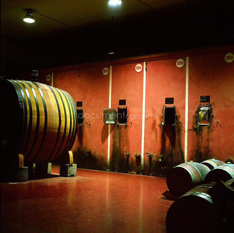 Bernard Teilland, homme d'affaire et amateur d'art, acceuille chaque année une exposition sur ses terres, ici les cuves et barriques de la cave, Chateau Sainte Roseline, Les Arcs-sur-Argens, France