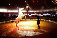 Medrano circus perform in Tel Aviv.