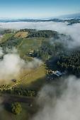 Oregon - Lemelson