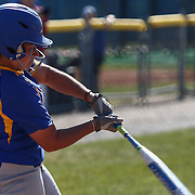 Hofstra University Outfielder Brielle Pietrafesa (14) doubles during a Colonial Athletic Association regular season softball game between Delaware and Hofstra Saturday, April 16, 2016, at Delaware softball stadium in Newark, Delaware.