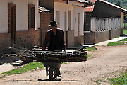Campesina woman carrying firewood on the street in Postrervalle, Santa Cruz, Bolivia
